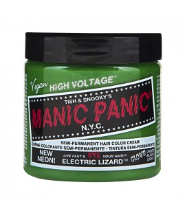 High Voltage Classic Electric Lizard
